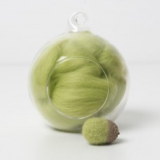 Merino green 48 wool top 10g
