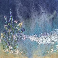 Daisies and Sand Greeting Card